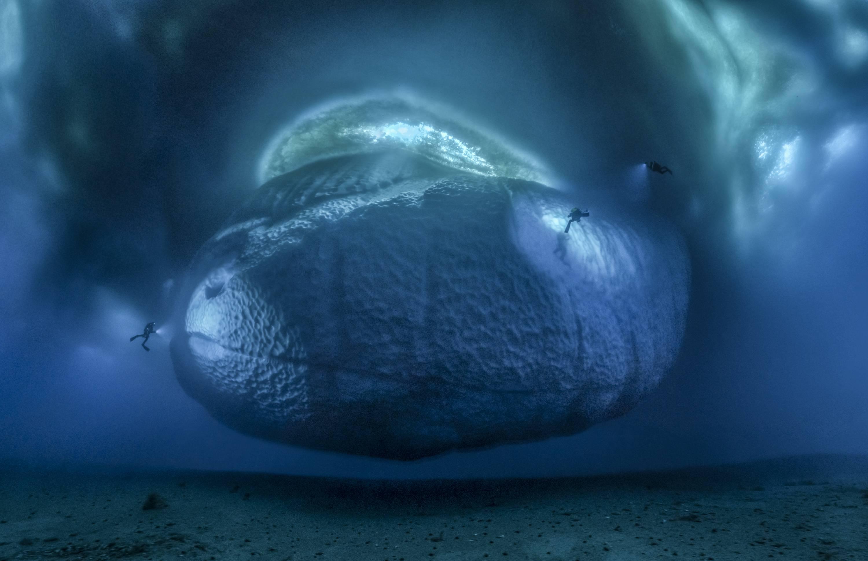 iceberg ballesta